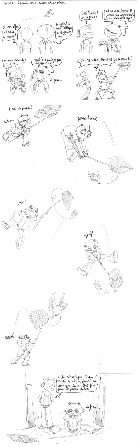 La chasse au pinson